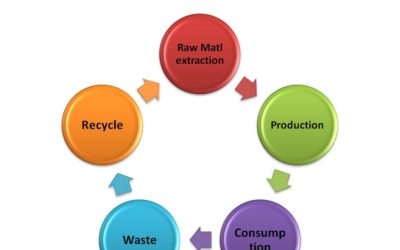Circular Economy – a force multiplier for Productivity and Sustainability